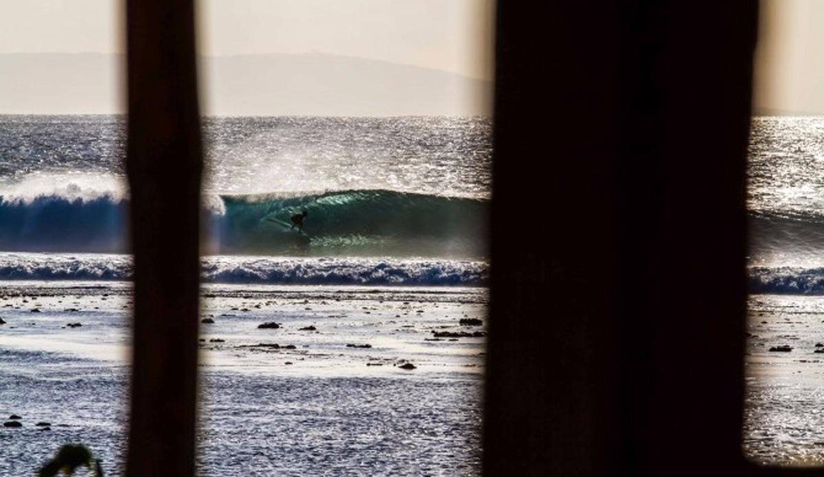 Photo: Brenton de Rooy