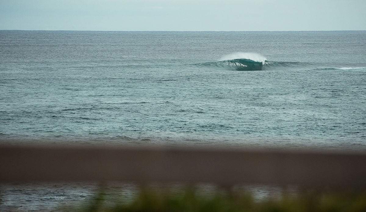 West Oz. Wow. Photo: Tom Pearsall