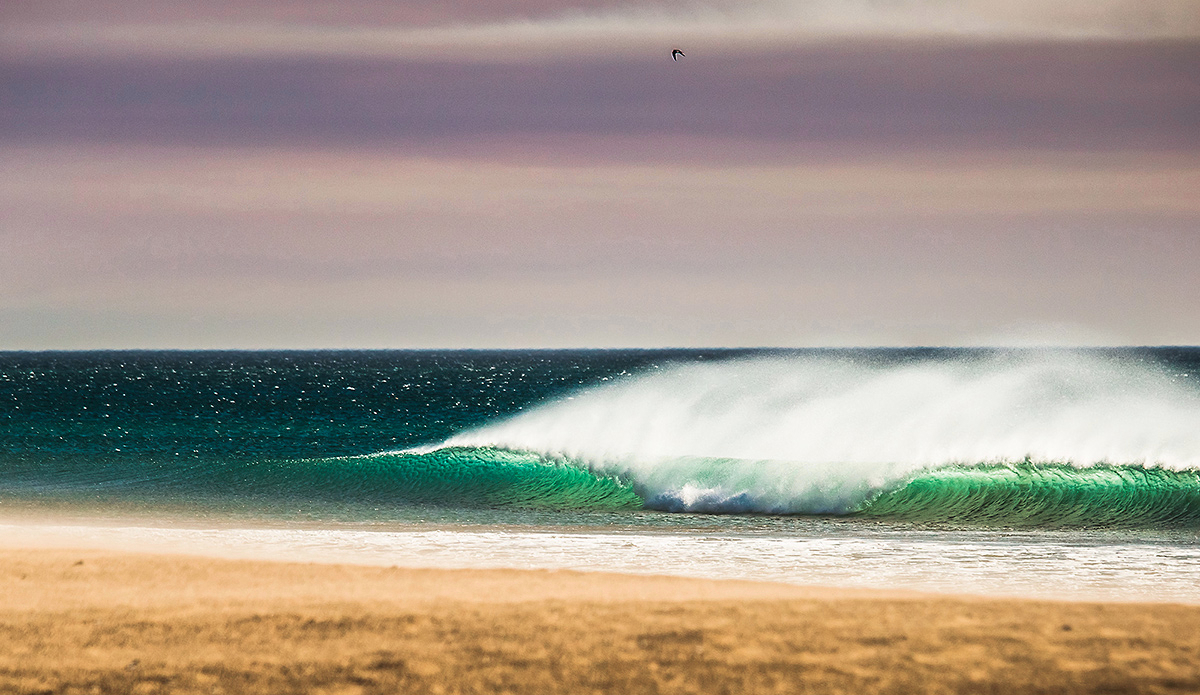 "Southern California with a healthy dose of Santa Ana winds in January. Sunny, warm and perfectly groomed. Photo: <a href=""http://evanconwayphoto.com/\"">Evan Conway</a>"