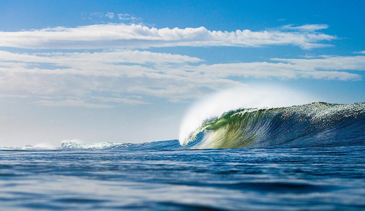 "Photo: <a href=""www.davidnilsenphotography.com"">David Nilsen Photography</a>"