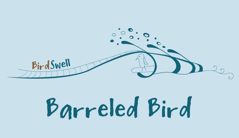Barreled Bird, Image: <a href= http://www.birdswell.com/ target=_blankBirdswell>BirdSwell</a>