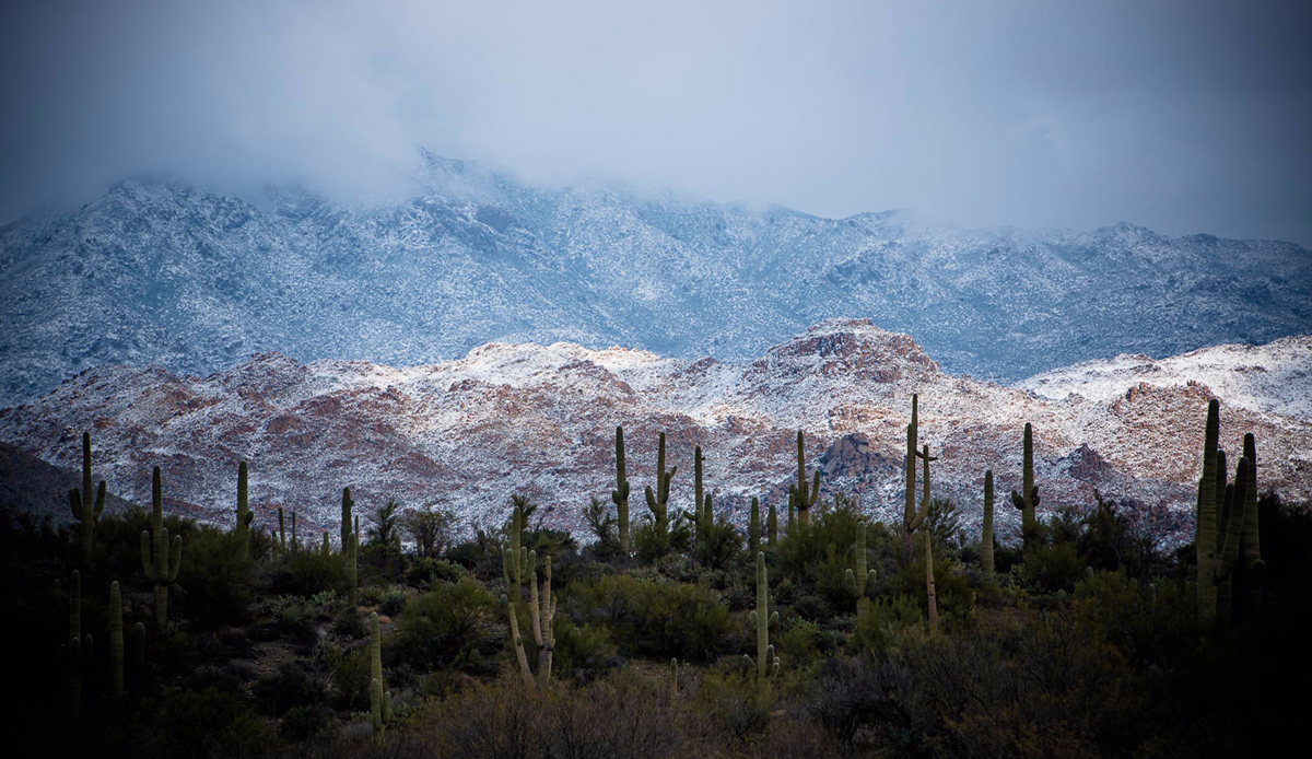 "Snowy desert, Arizona, 2014. Photo: <a href=""http://instagram.com/deanblottogray\"">Dean Blotto Gray</a>"