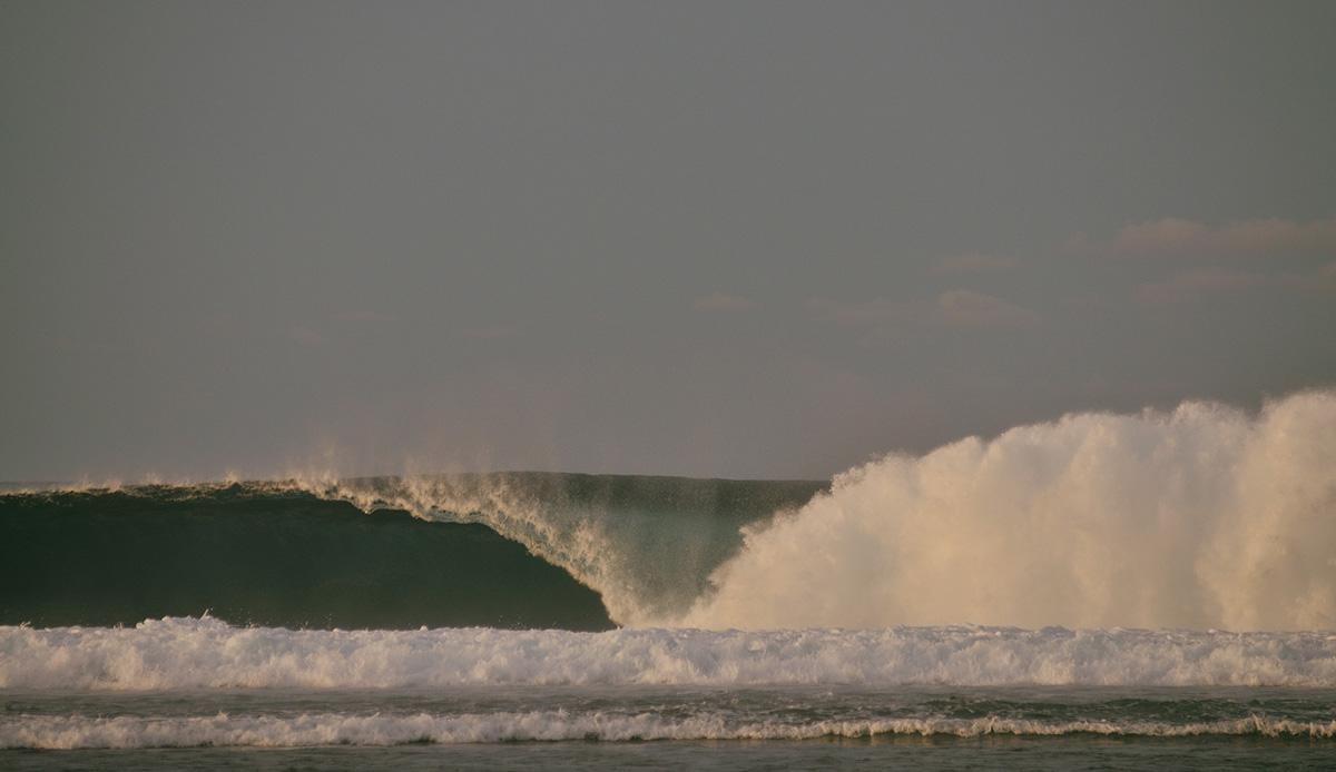 """HTs. Photo: <a href= \""""http://joaobracourt.com/\"""" target=_blank>Joao Bracourt.</a>"""