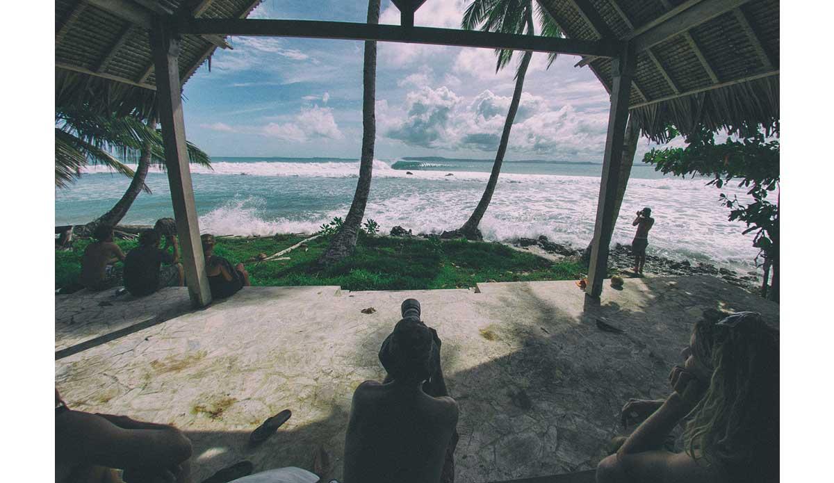 "Not a bad vantage point. Photo: <a href= \""http://joaobracourt.com/\"" target=_blank>Joao Bracourt.</a>"