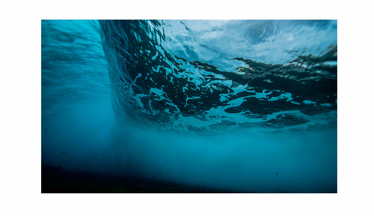 "Underwater vision at El Confital. Photo:<a href=\""http://www.xn--jorgeibez-61a0p.com/\"">Jorge Ibáñez</a>"