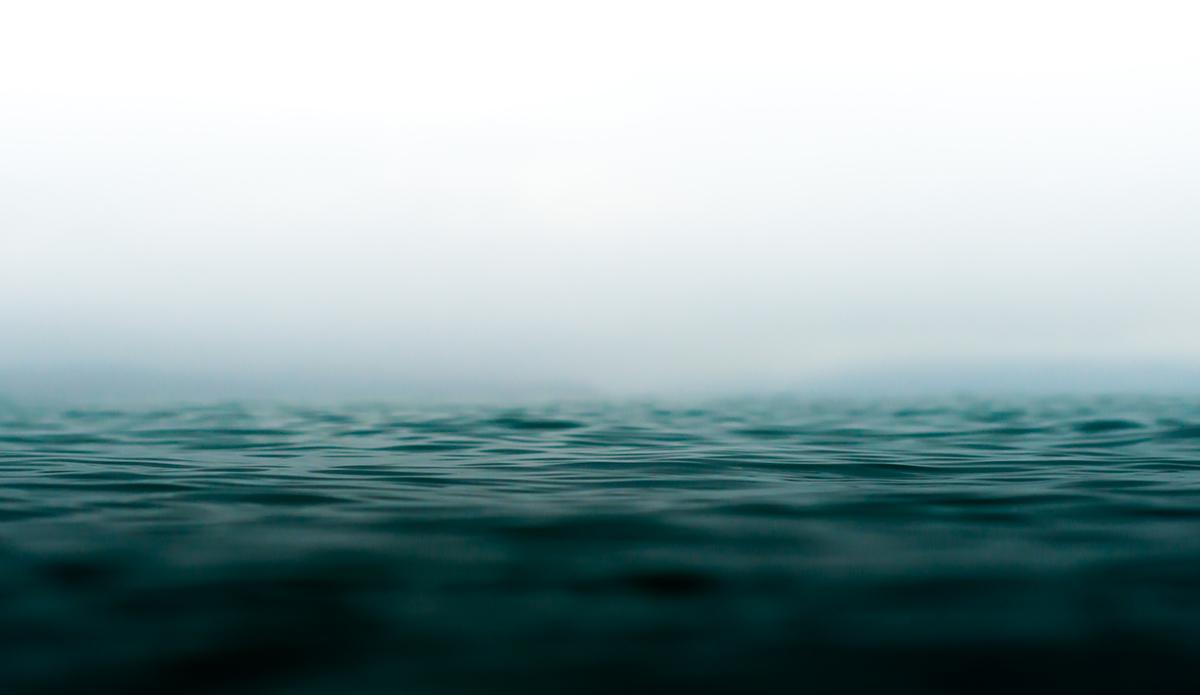 "Alone in the fog. Photo: <a href=\""http://www.chechorley.com/\"">Che Chorley</a>"