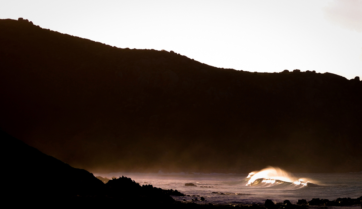 Photo: Che Chorley