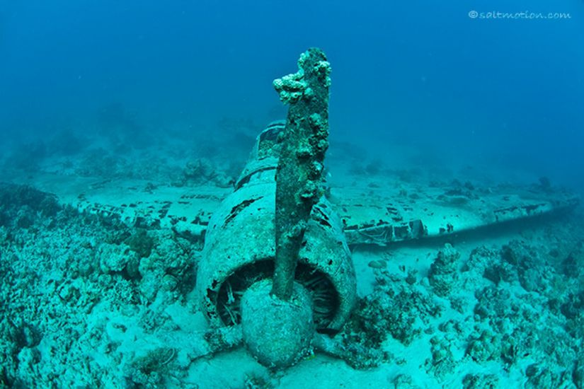 Potential WWII wreckage? Have a dive and find out for yourself.