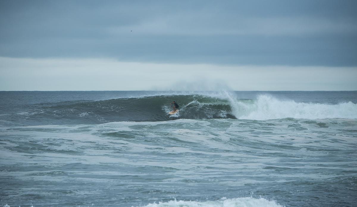Photo: ANDREEA WATERS
