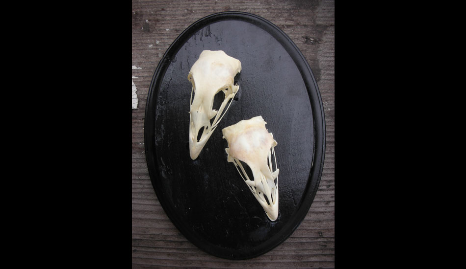 """I did a lot of these when I lived in Oakland. There was a bounty of bones there! I still make them but not as much anymore. These were my favorite. <a href=\""""http://www.heathergabel.com/\"""" target=_blank>HeatherGabel.com</a>"""