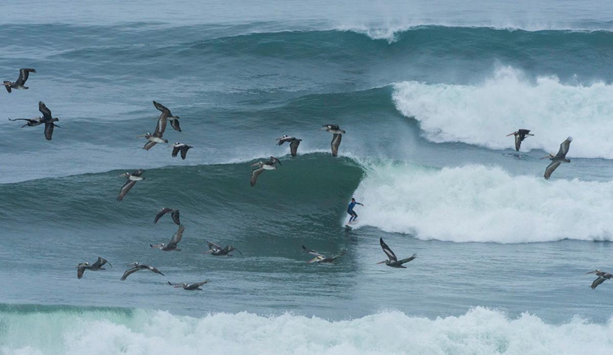 "Punta Rocas, Peru. Photo: <a href=\""http://www.isasurf.org/\"">ISA | Tweddle</a>"