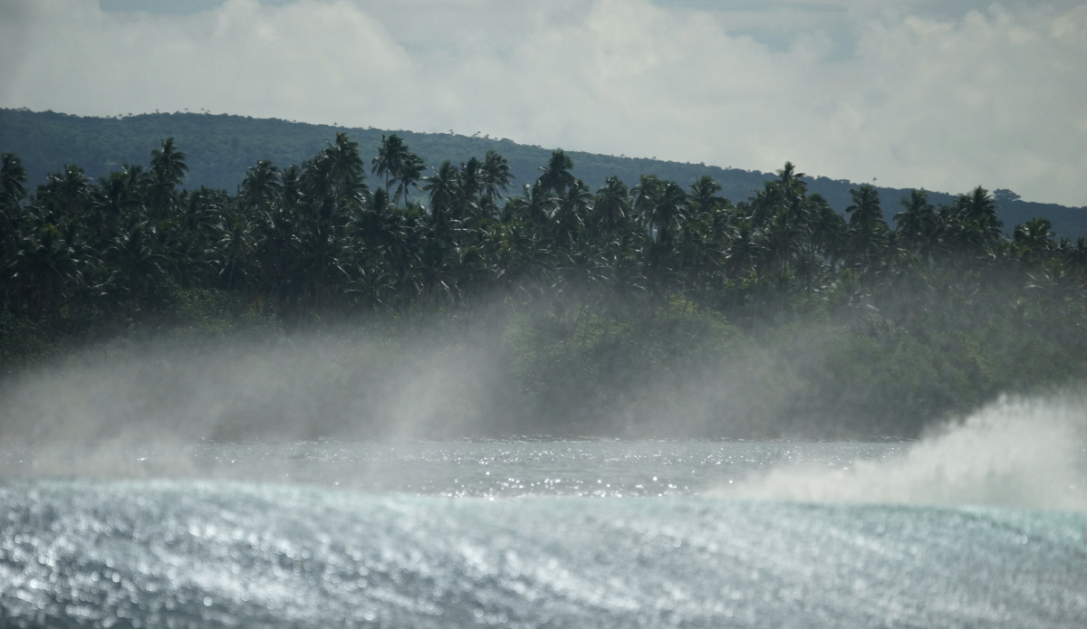 "Island vibes spray. Photo: <a href=\""http://lynchfilm.com\"">LynchFilm.com</a>"