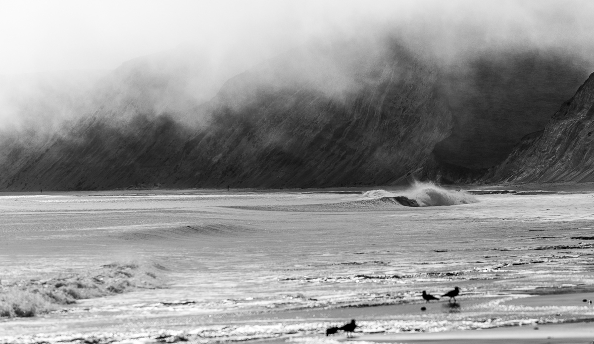 A foggy day at Point Ryes National Seashore.