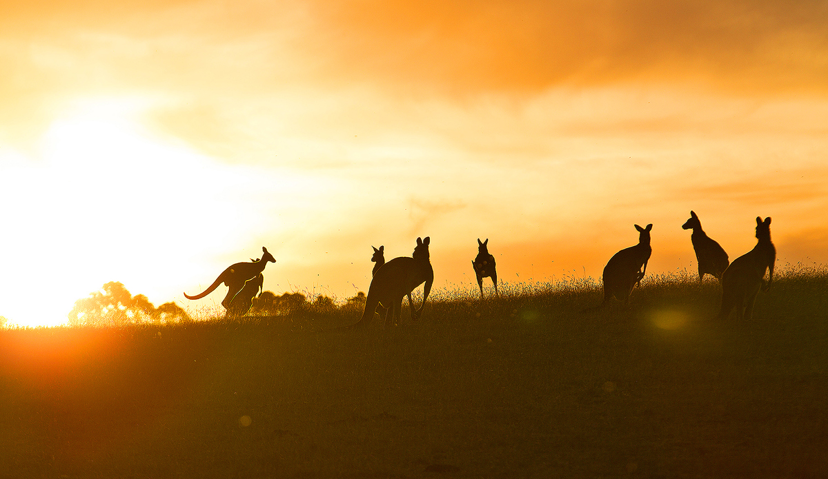 "Australia. Photo: <a href=\""http://www.kirstinscholtz.com/\"">Kirstin Scholtz</a>"