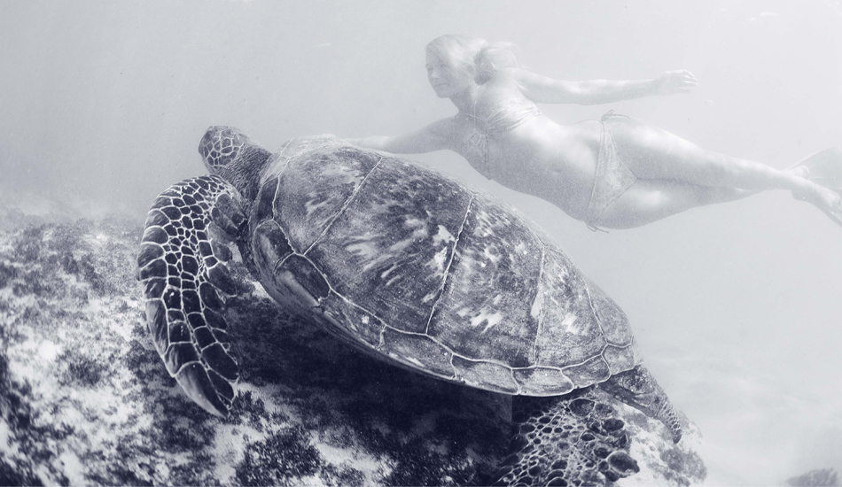 "GIRL AND TURTLE. Maui, 2009. Photo: <a href=""http://www.luciagriggi.com\"" target=\""_blank\"">Lucia Griggi</a>"