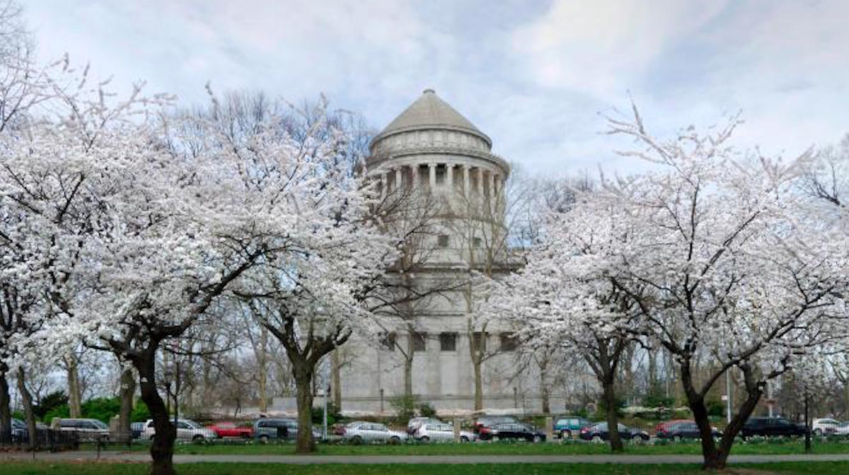 Cherry blossoms at General Grant Memorial. Photo: NPS