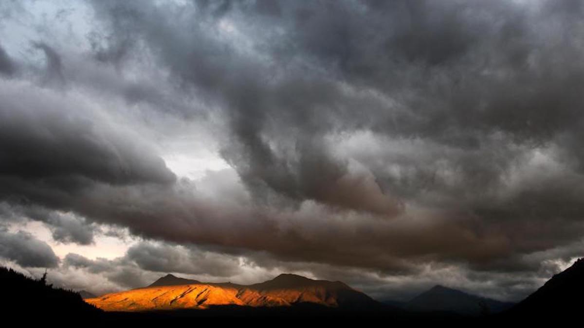Denali National Park. Photo: Tim Rains