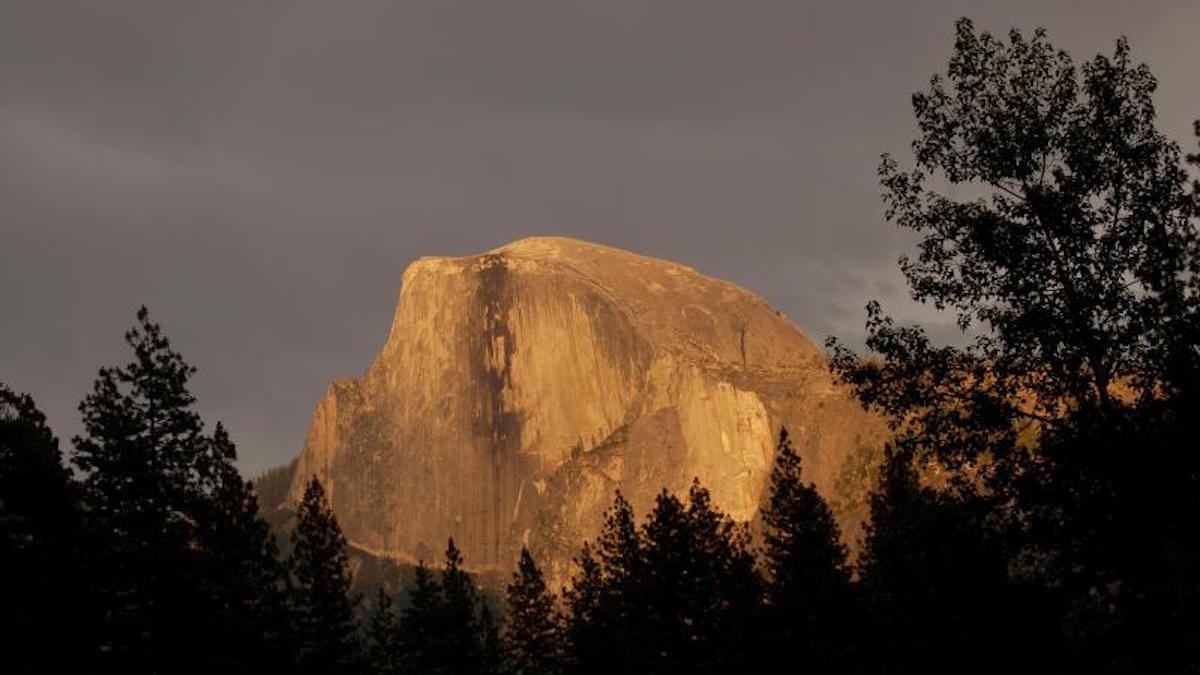 Half Dome. Photo: Damon Joyce