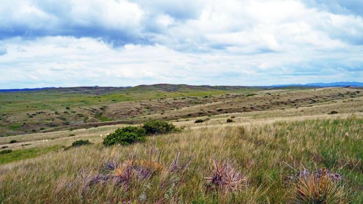 Little Bighorn battlefield. Photo: Marian Doane/NPS