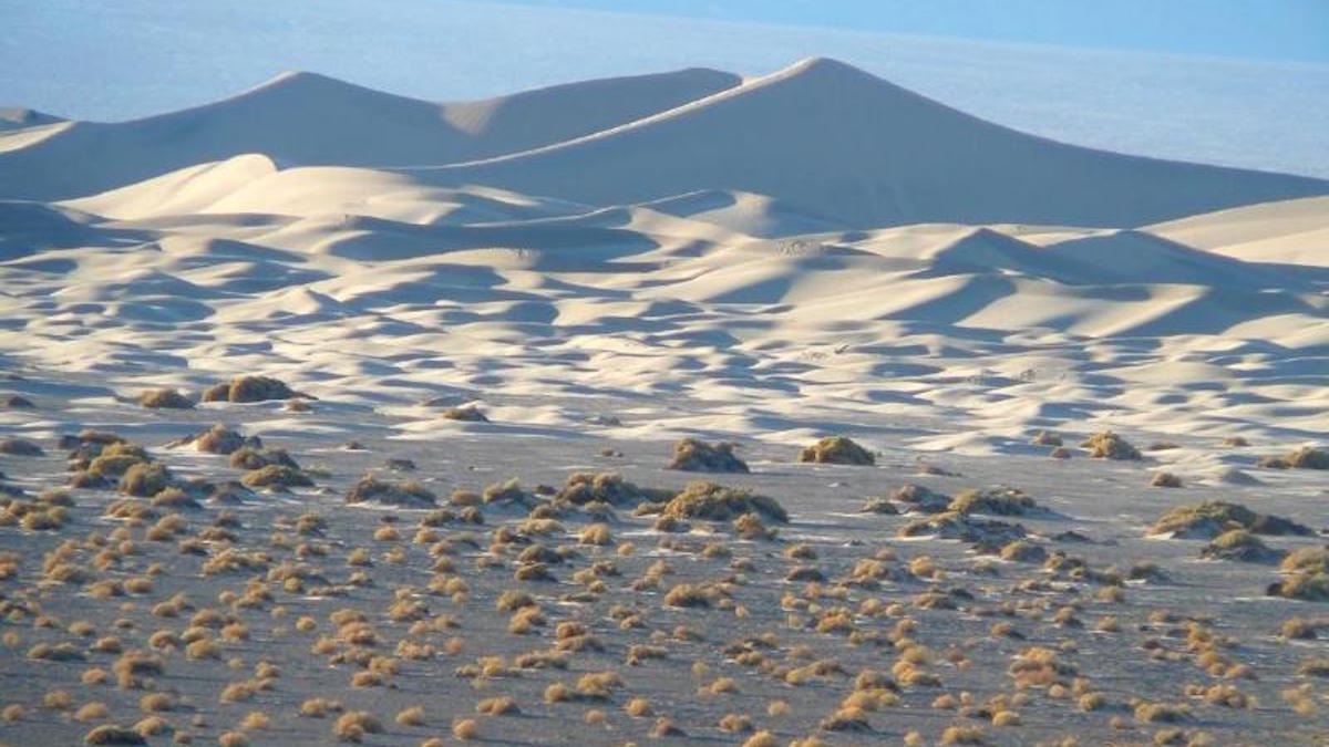 Mesquite Flat sand dunes. Photo: NPS