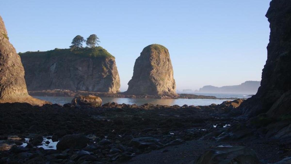 Olympic Coast sea stacks. Photo: NPS