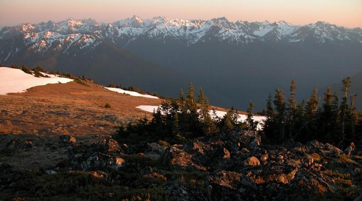 Olympic National Park. Photo: NPS