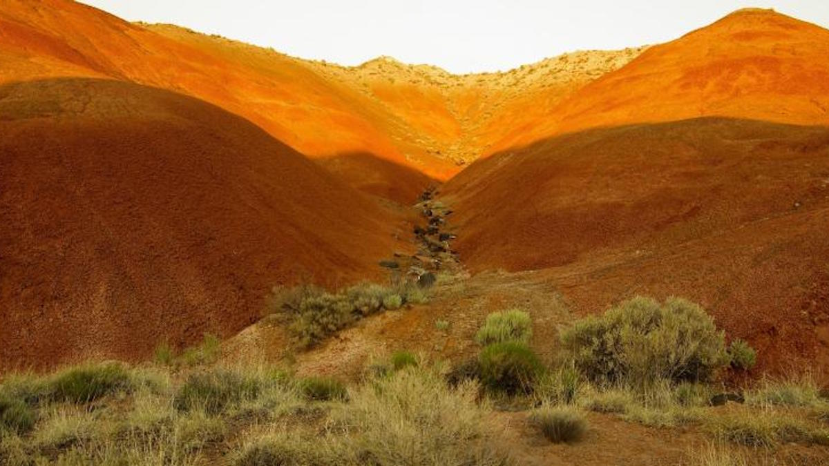 Painted desert. Photo: NPS