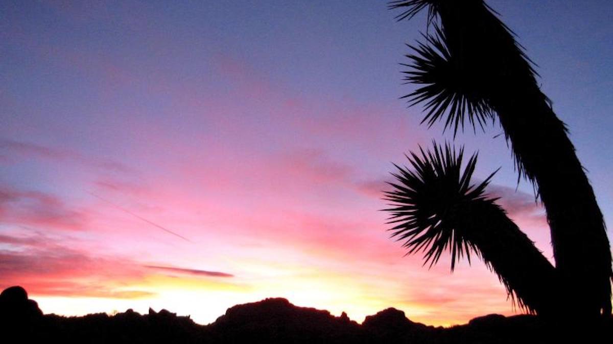Sunset at Jumbo Rocks, Joshua Tree. Photo: NPS
