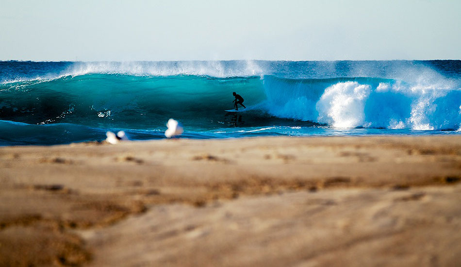 """The bank working at Bronte early last winter. Photo: <a href= \""""http://bayflare.com/\"""" target=_blank>Rhydian Thomas.</a>"""