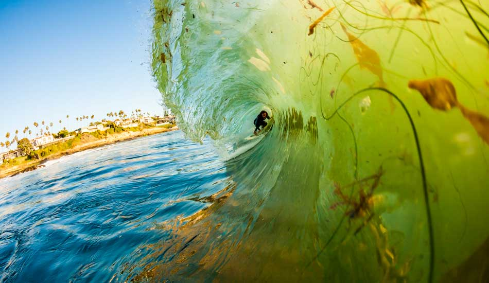 "Kelp dodging in San Diego. Photo: <a href=""http://anthonyghigliaprints.com/\"" target=_blank>Anthony Ghiglia</a>"
