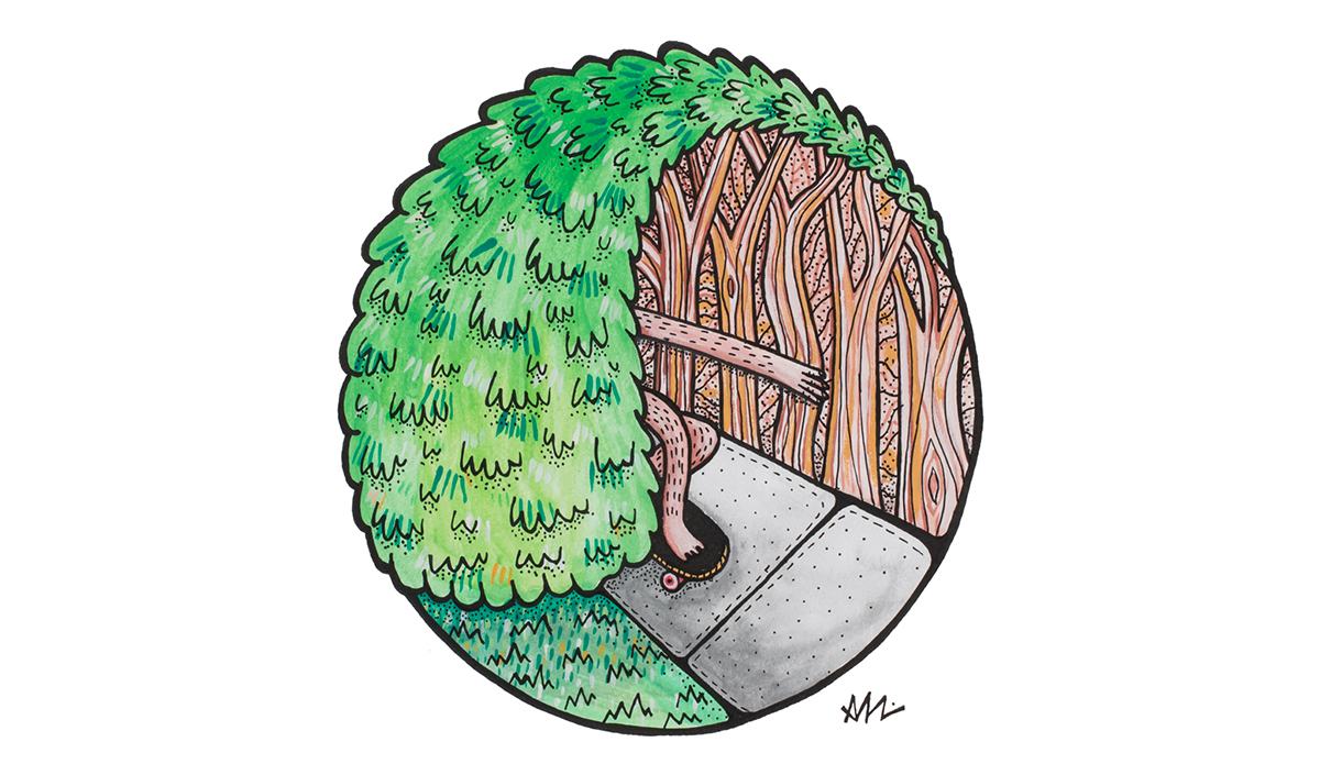 "Photo:<a href=\""http://www.saltyvibes.bigcartel.com/\"">Tree Barrell</a>"