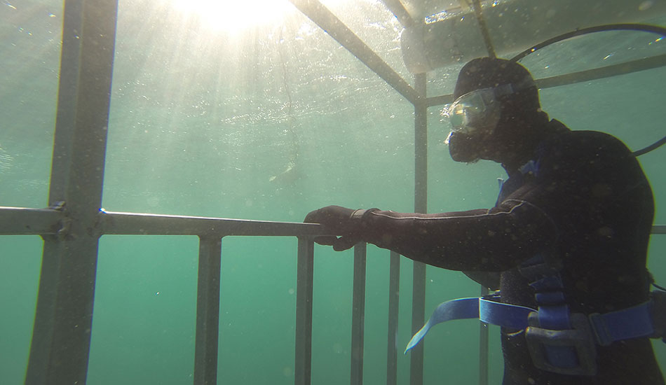 "Insert shark here, and you have a successful trip. Photo: <a href=\""http://instagram.com/migdailphoto\""> Seth Migdail</a>"