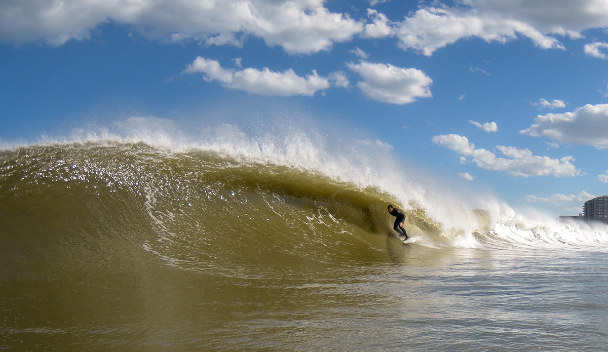 Luke Ditella. Photo: Tim Torchia