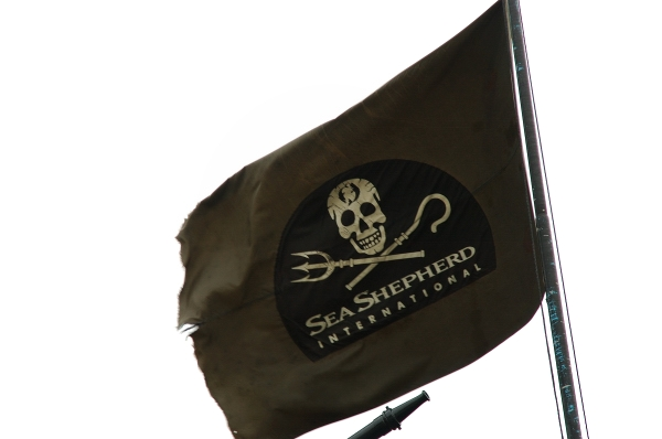 Sea Shepherd Flag