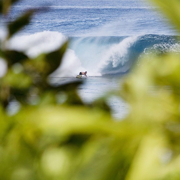 Unknown, Pipeline. Photo: Mike Smolowe