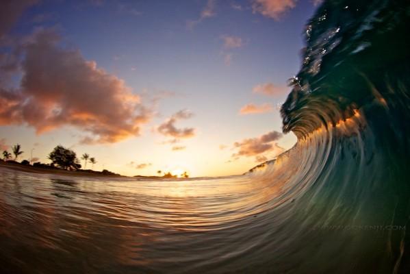 Jellyfish Wave. Photo: Kenji Croman
