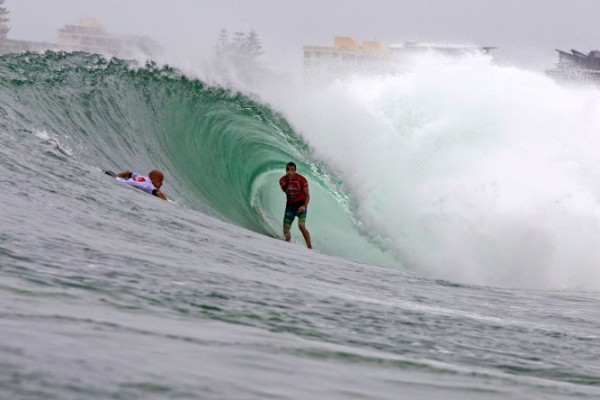 Parko lets the bird out of its cage. Photo: ASP/Carey