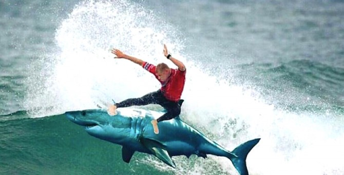 Mick Fanning, Memes, Surfing, JBayOpen, WSL, Shark, Great White, South Africa