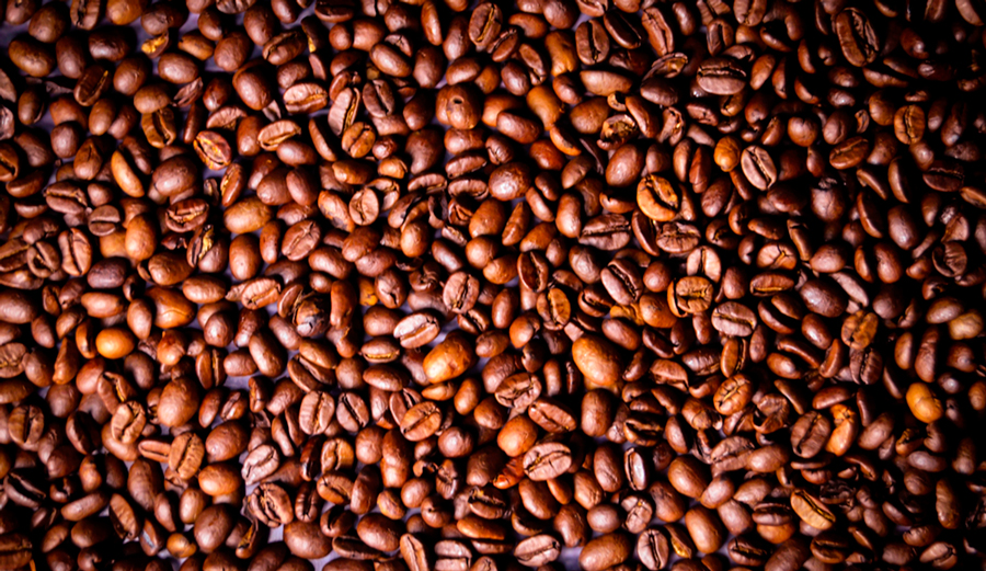 The beans of life. Or at least the beans of early morning surf sessions. Photo: artefacti