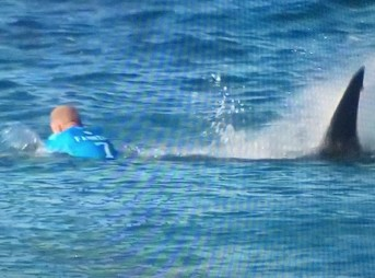 Mick Fanning Shark J-Bay