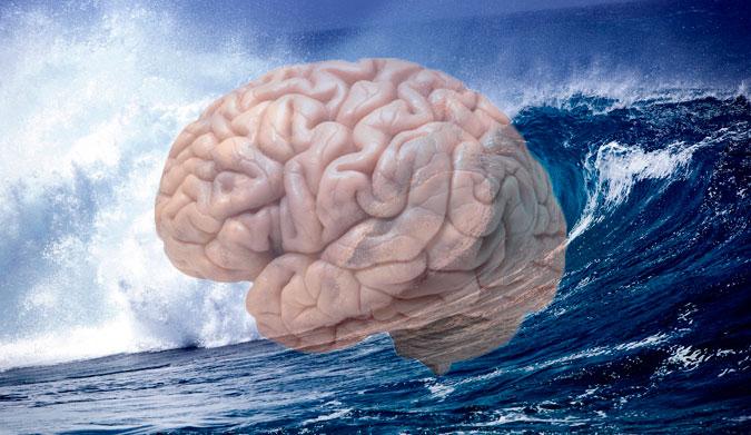 brain-surf