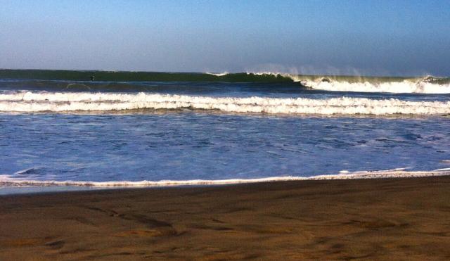A surfer's gotta do what a surfer's gotta do. Photo: Neko Catanzaro