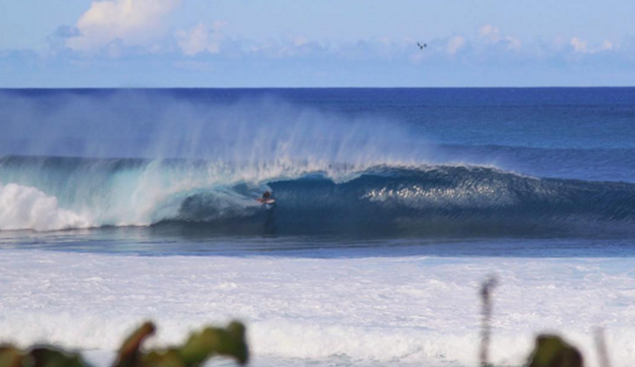 Jamie O'Brien gets a  perfect score in his Quarterfinal heat of the Volcom Pipe Pro. Photo: Zak Noyle / Red Bull