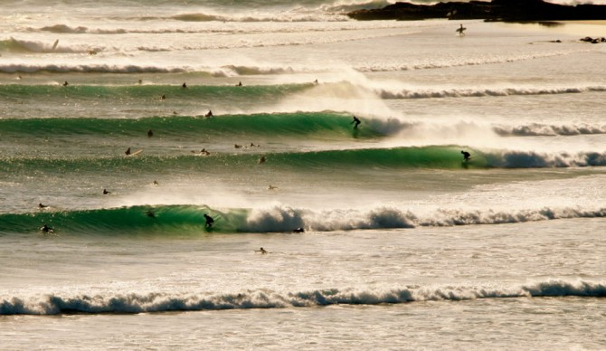 Snapper. Just a sprinkle crowded on its day. Photo: Cyrus Sutton