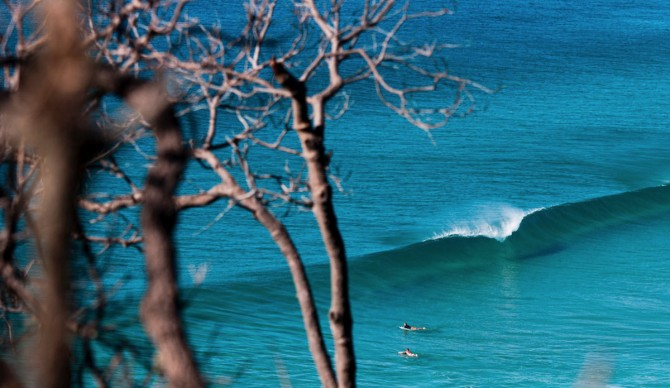 You want to be close to this for a living, ehhh? Well, you can do it. Photo: Kane Brown
