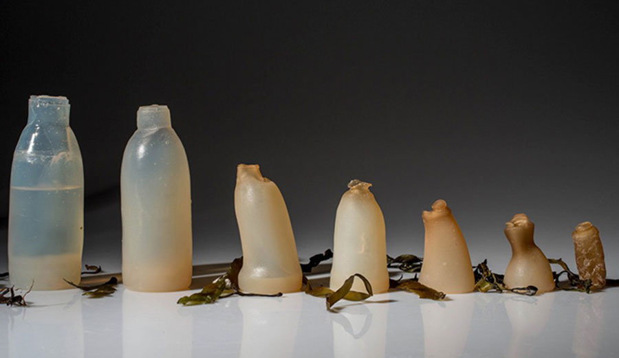 Ari Jonsson's biodegradable water bottle in the throes of decomposition. You won't see a plastic bottle doing this. Image: EMGN.com