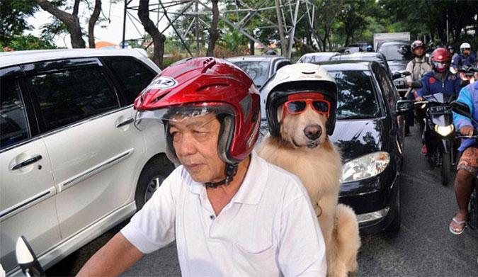 Safe riding is smart riding. Photo: Jefta Images