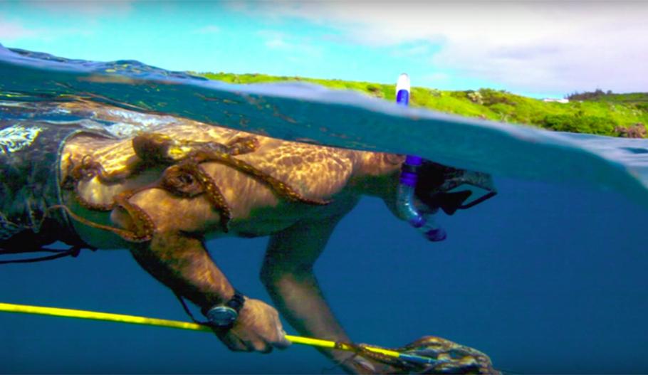 Photo: Screenshot TED x Maui.