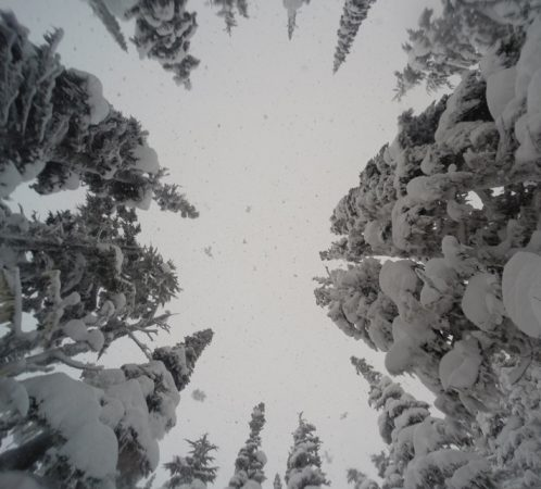 When it's this deep, you see this view from time to time.