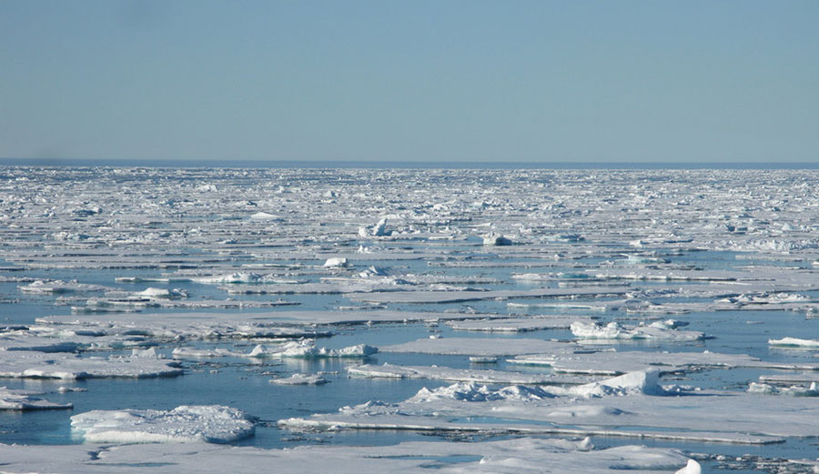 Sea ice in the Arctic. Photo: Tom Rippeth